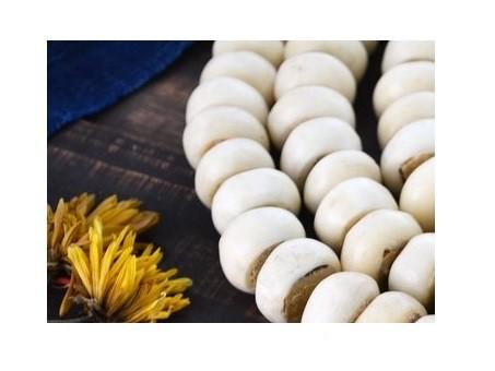 Nellass - Tienda online comprar mayorista distribuidor precio