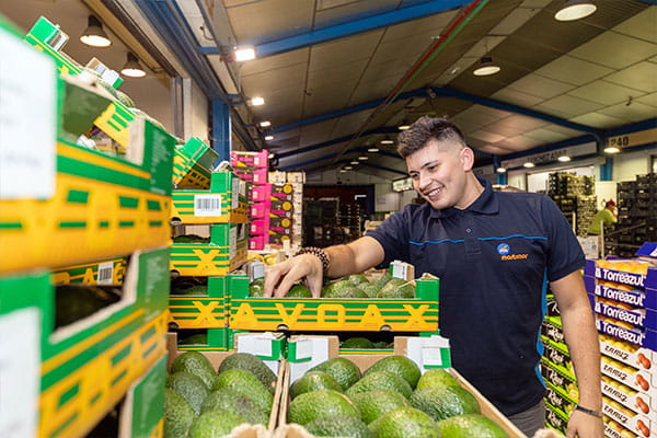 Martimar | Mayorista y distribuidor de frutas y verduras