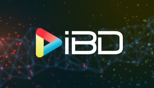 IBD Global España mayorista CCTV. Distribuidor oficial Dahua