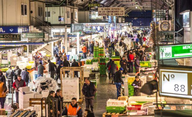 Mercamadrid, la mayor plataforma de distribución, comercialización, transformación y logística de alimentos frescos de España